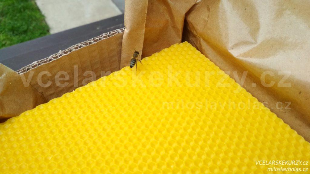 Mezistěny ze včelího vosku